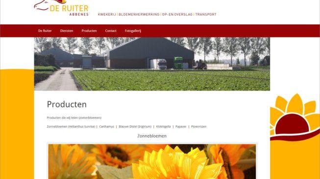 Website HdeRuiter